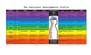 Il profilo di sviluppo degli Istituti